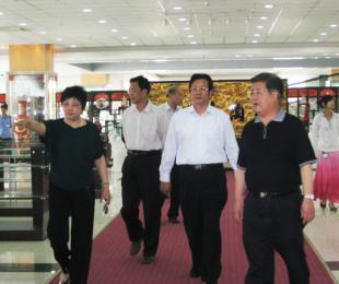 2009年5月15日无锡人大领导来宜调研